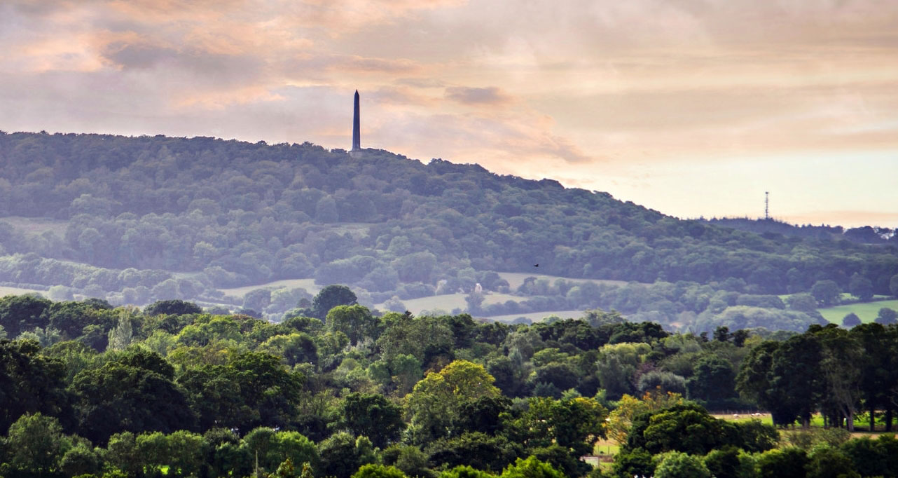 Wellington monument blackdown hill somerset